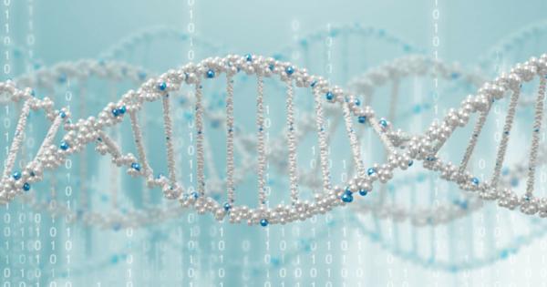 food allergy genes